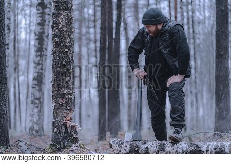 Bearded Woodman Or Forester Cuts Down A Tree With An Axe. He Stopped To Rest. Tree Is Sick Or Dead,