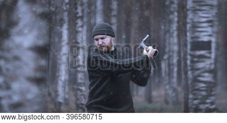 A Brutal Bearded Man (woodman, Forester, Villager) Cuts Down A Tree With An Axe. Late Autumn Or Wint