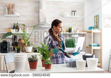 Holding Shovel For Gardening And Laptop In Kitchen Looking For Home Decoration. Decorative, Plants,