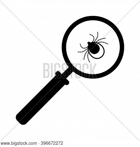 Mite, Tick Bug Under Magnifying Glass. Mite Testing, Research.