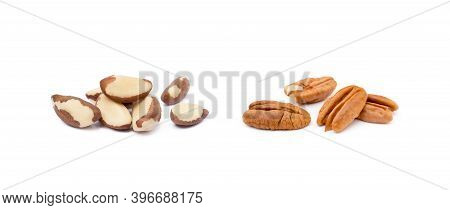 Fresh Pecan And Para Nuts Isolated On White Background