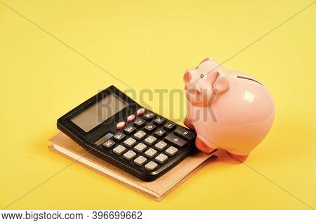 Financial Wellbeing. Economics And Finance. Credit Concept. Money Saving. Save Money. Banking Accoun
