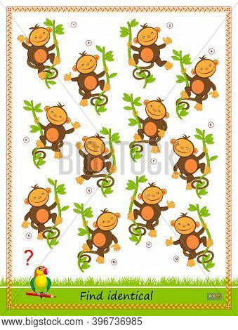Logic Puzzle Game For Children And Adults. Find Two Identical Monkeys. Printable Page For Kids Brain