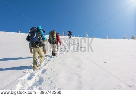A Group Of Mountaineers Climbs To The Top Of A Snow-capped Mountain. Group Of Mountaineer Climbing O