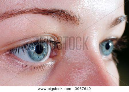 Blue Eyes Closeup
