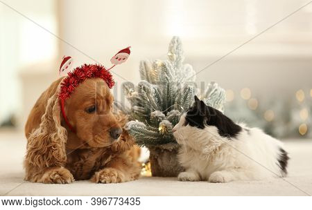 Adorable Cocker Spaniel Dog In Santa Headband And Cat Near Decorative Christmas Tree
