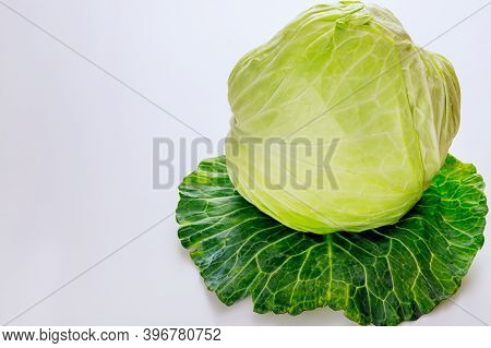 Crunchy Cabbage Isolated On White Background. Close Up.