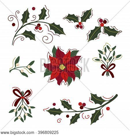 Set Of Holly And Mistletoe Branches And  Poinsettia Isolated On White. Xmas Vector Floral Elements F