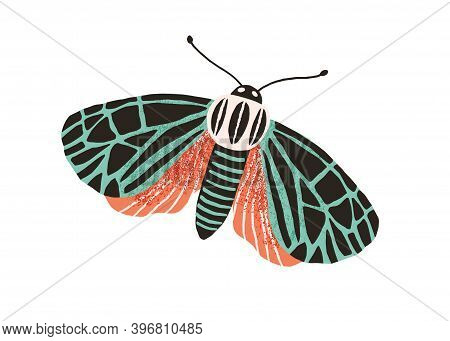 Single Butterfly With Colored Wings And Antennae Isolated On White Background. Beautiful Flying Moth