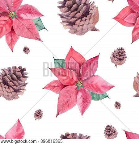 Watercolor Seamless Pattern With Poinsettia And Cone On White Background. Winter, Christmas Theme.