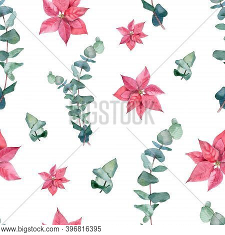 Watercolor Seamless Pattern With Poinsettia And Eucaliptus On White Background. Winter, Christmas Th