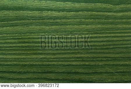 Green Wooden Texture Background. Abstract Wooden Grunge Texture