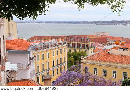 Lisbon City View With Purple Jacaranda Tree In Bloom - Alfama Neighborhood.