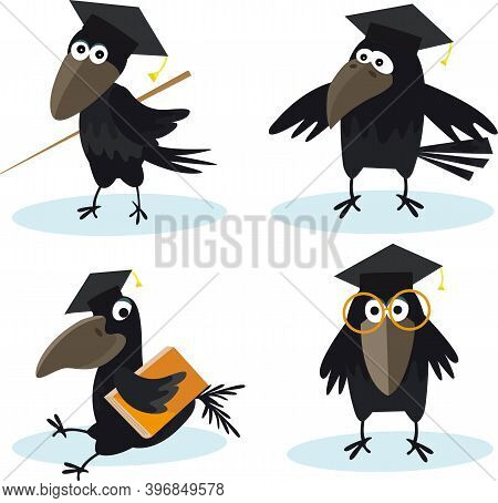 Cartoon Set Crow With Bachelor Cap And Book Vector Image