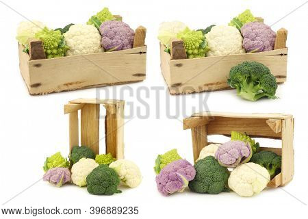 Romanesco broccoli, fresh cauliflower, purple cauliflower and green broccoli in a wooden crate on a white background