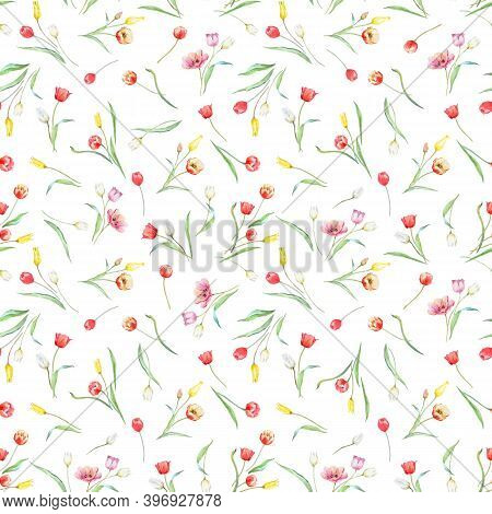 Beautiful Vector Seamless Pattern With Watercolor Gentle Blooming Tulip Flowers. Stock Illustration.