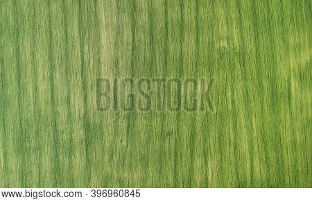Green Agricultural Field