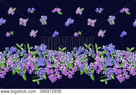 Seamless Border With Phlox Flowers Isolated On Dark Blue.