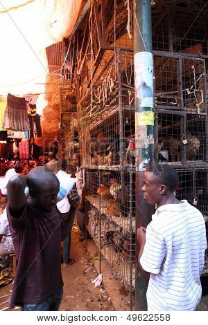 Chicken Cages In The Market