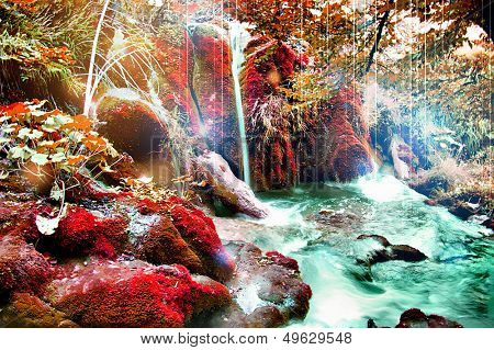 fairy forest - artistic picture in fantasy style