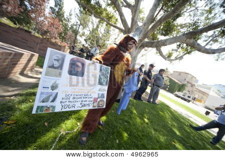 Animal Rights Activists At Ucla