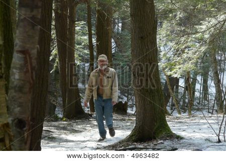 Man Walking Through Woods