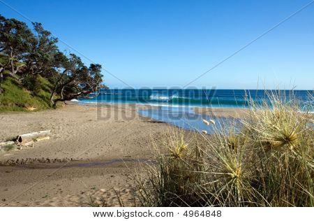 Kings Beach, Whananaki North, Northland, New Zealand