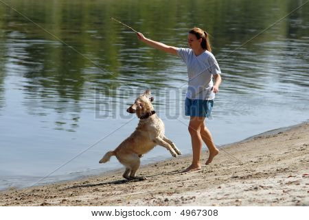 Young attractive female and her dog playing near water poster