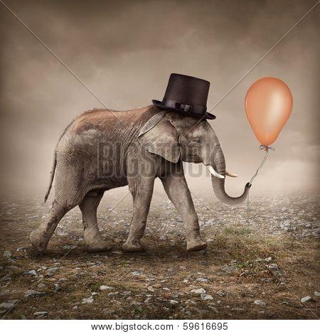 Elephant with a orange balloon