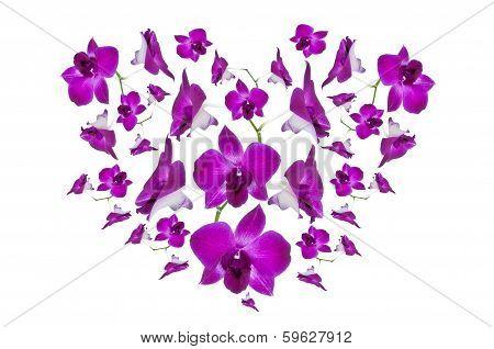 Purple Orchid Heart