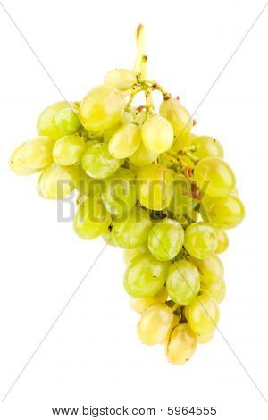 Path Of Green Grapes Isolated On White Background