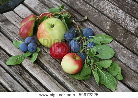 Apples Cherries Pears On  Bench
