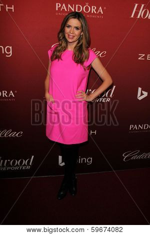 LOS ANGELES - FEB 10:  Carly Steel at the The Hollywood Reporter's Annual Nominees Night Party at Spago on February 10, 2014 in Beverly Hills, CA