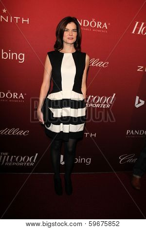 LOS ANGELES - FEB 10:  Betsy Brandt at the The Hollywood Reporter's Annual Nominees Night Party at Spago on February 10, 2014 in Beverly Hills, CA
