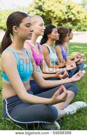 Female friends sitting in lotus position while performing yoga at park