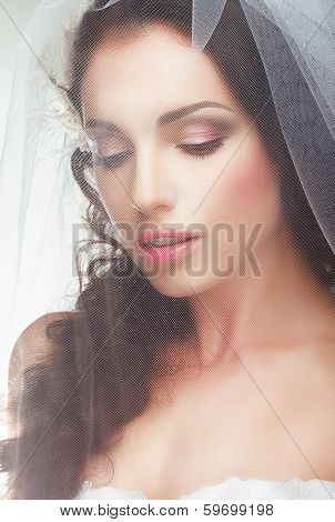 Wedding. Engagement.  Sentimental Likable Bride In Transparent Voile