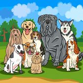 Cartoon Illustrations of Funny Purebred Dogs Characters Group poster
