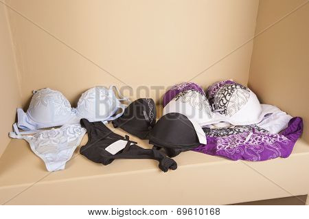 Womens Lingerie On Display In Shop