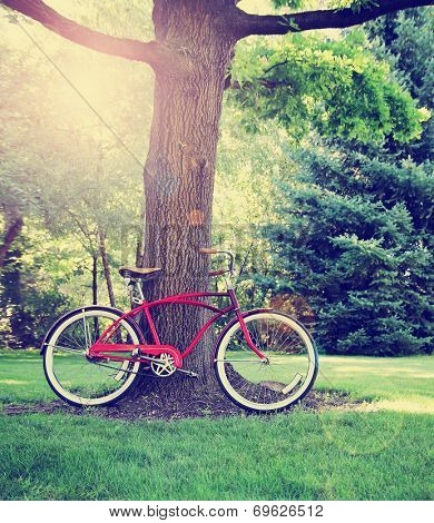 a old style bike leaning against a tree toned with a retro vintage instagram filter