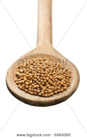 Wooden Spoon With Mustard Seeds