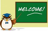 Wise Owl Teacher Cartoon Character In Front Of School Chalk Board With Text  Illustration Isolated on white poster