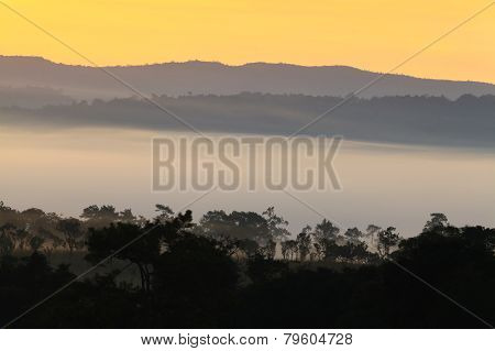 misty morning sunrise in mountain at Thung Salang Luang National Park Phetchabun,Thailand