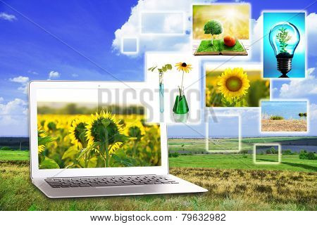Laptop and eco theme images on nature background