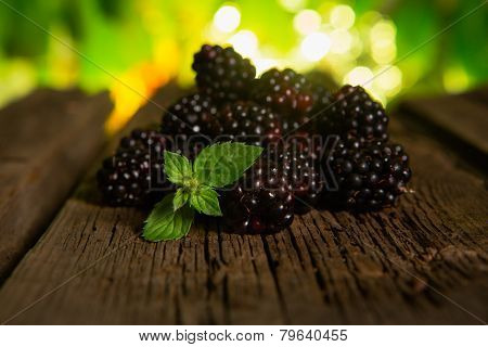 Sweet Fresh  Blackberry In The Wood Bawl