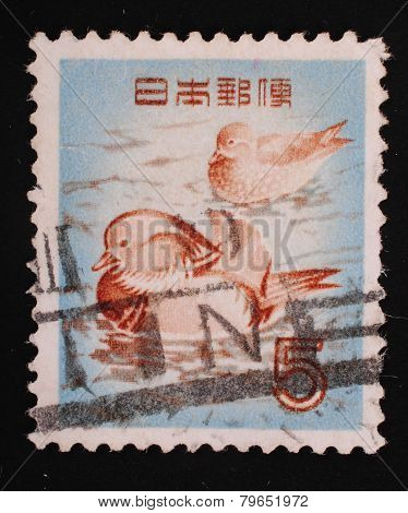 Japan- Circa 1967 Postage Stamp Printed Slaked In Japan Shows Image Of Ducks In The Blue Water Anima
