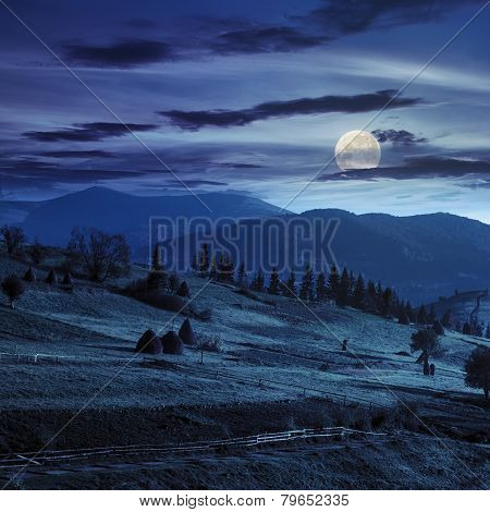 Path Near Field With Haystacks At Night