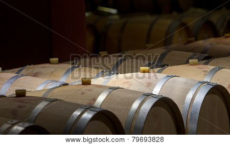 Wine Barrels Cellar Bulgaria