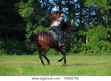 Young rider is carried away on a horse