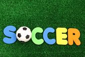 Soccer ball on atificial turf - word plastic colours poster