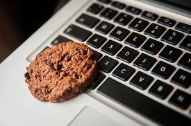 Internet cookies, concept